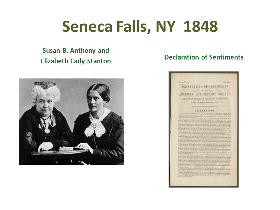 Elizabeth Cady Stanton Declaration of Sentiments