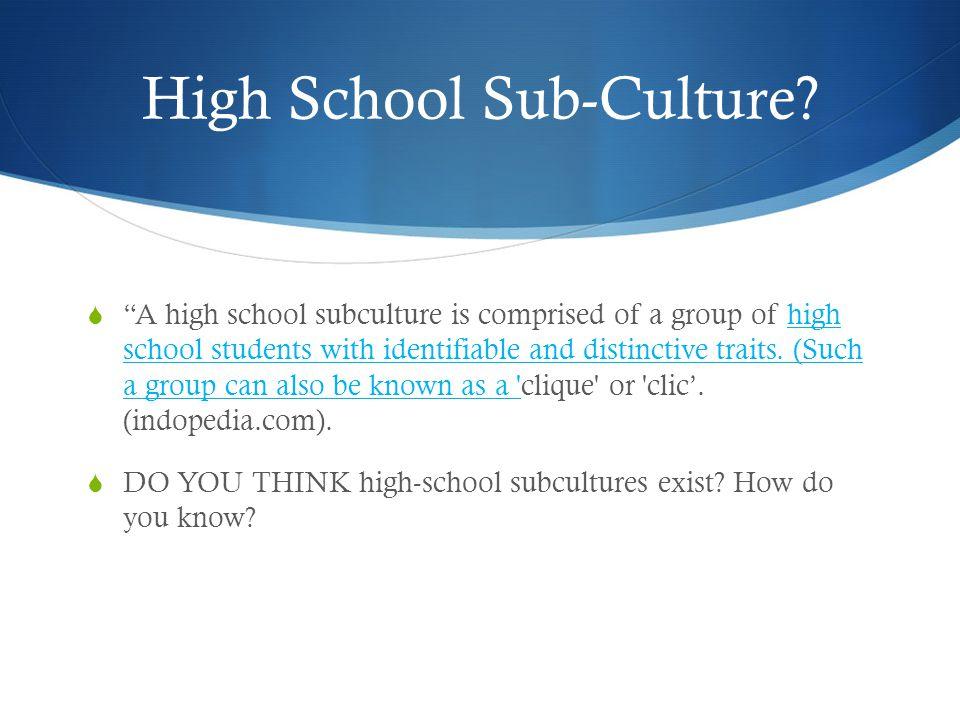 High School Sub-Culture