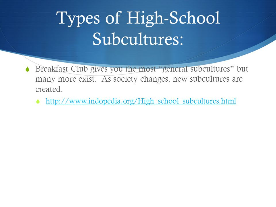 Types of High-School Subcultures: