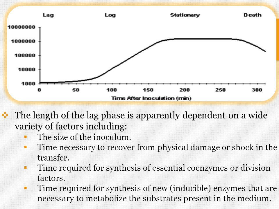 The length of the lag phase is apparently dependent on a wide variety of factors including: