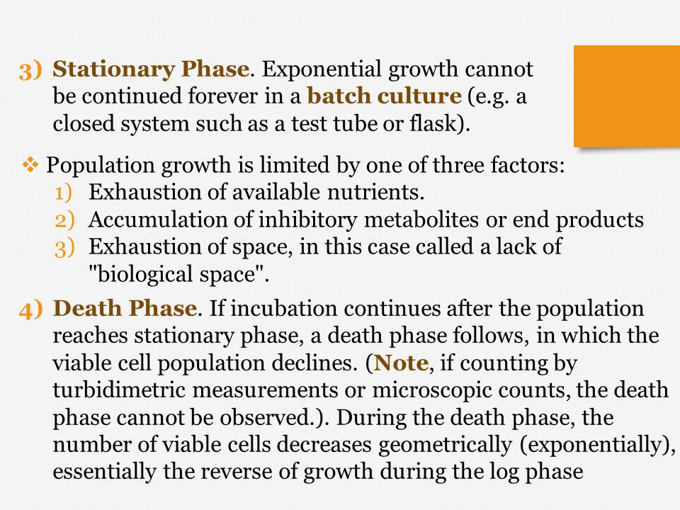 Stationary Phase. Exponential growth cannot be continued forever in a batch culture (e.g. a closed system such as a test tube or flask).
