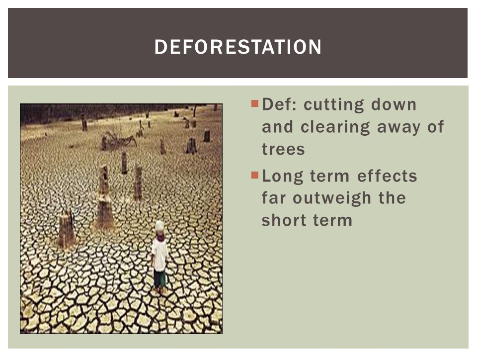 DEFORESTATION Def: cutting down and clearing away of trees