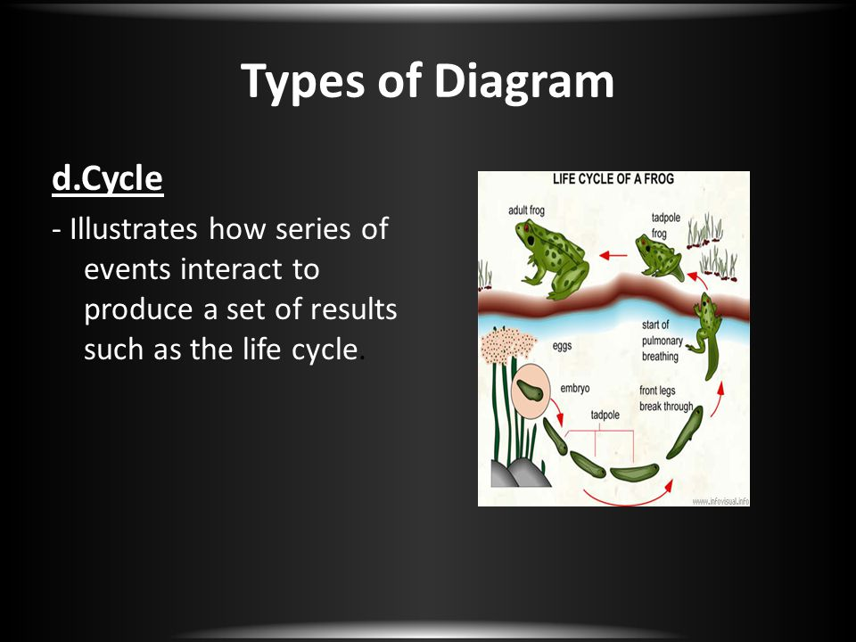 Types of Diagram d.Cycle