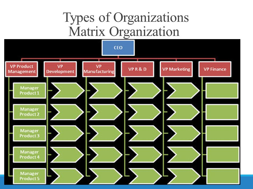 Types of Organizations Matrix Organization