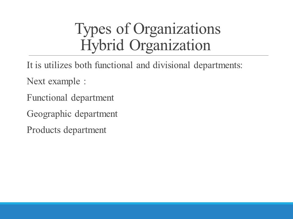Types of Organizations Hybrid Organization