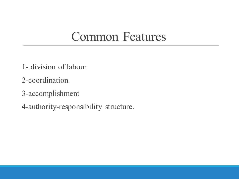 Common Features 1- division of labour 2-coordination 3-accomplishment 4-authority-responsibility structure.