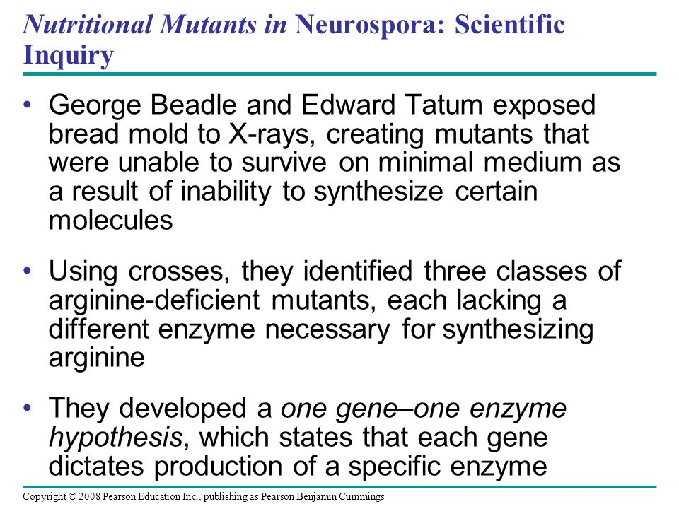 Nutritional Mutants in Neurospora: Scientific Inquiry
