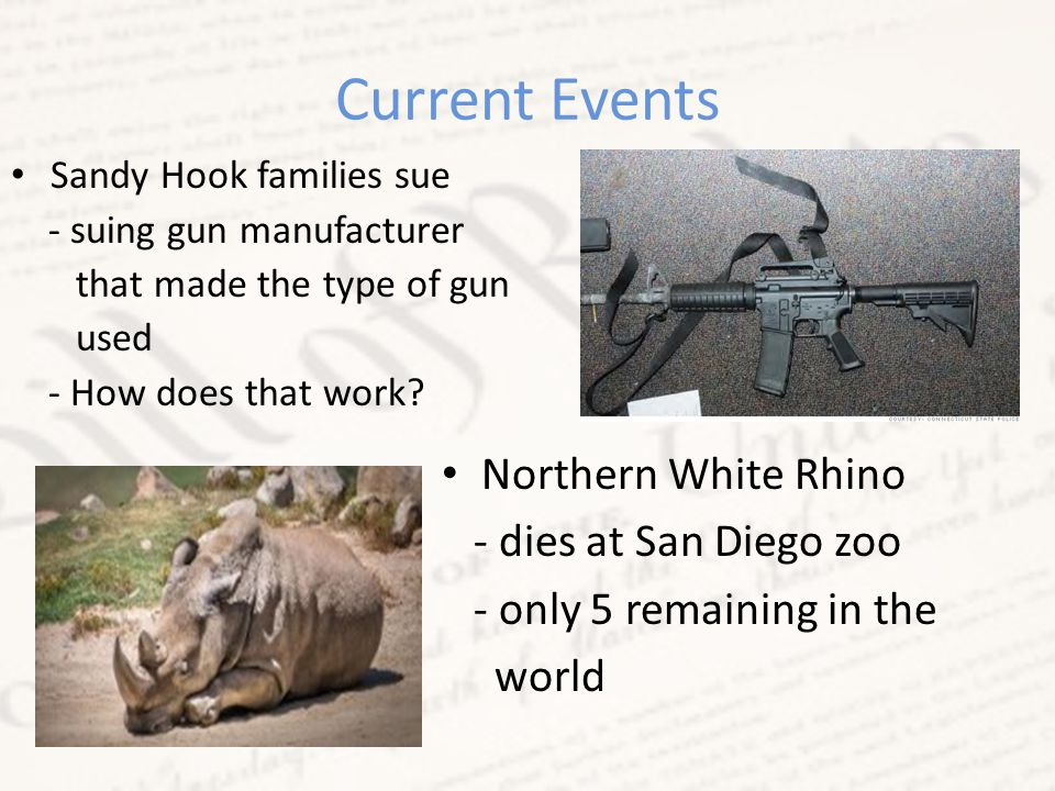 Current Events Northern White Rhino - dies at San Diego zoo