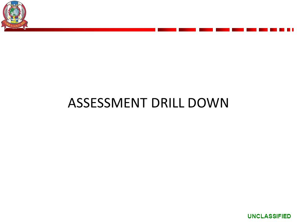 ASSESSMENT DRILL DOWN