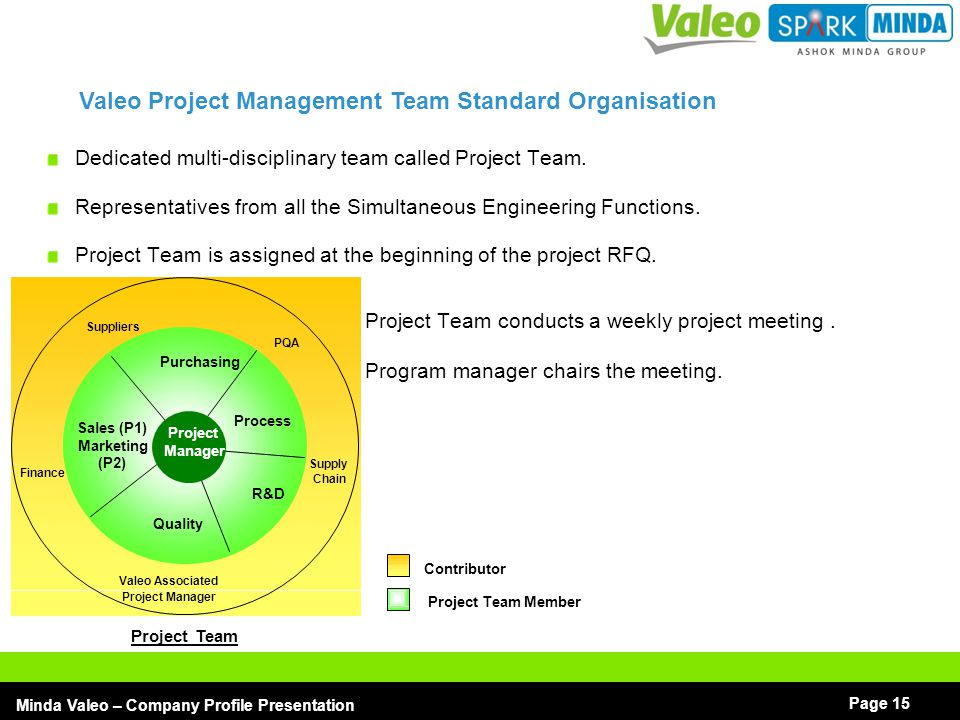 Valeo Project Management Team Standard Organisation