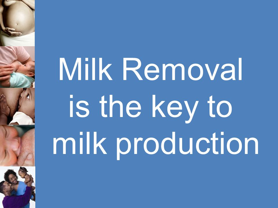 is the key to milk production