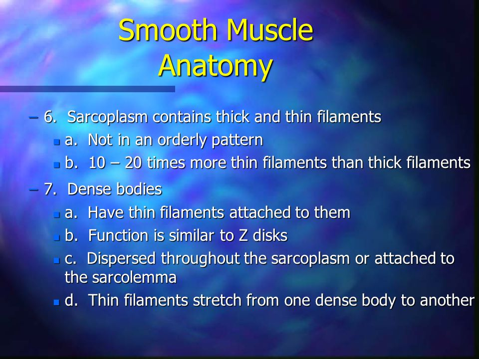 Smooth Muscle Anatomy 6. Sarcoplasm contains thick and thin filaments