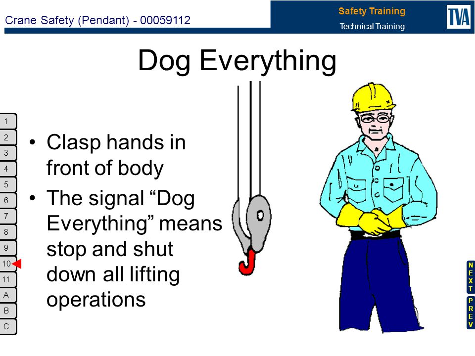 Dog Everything Clasp hands in front of body