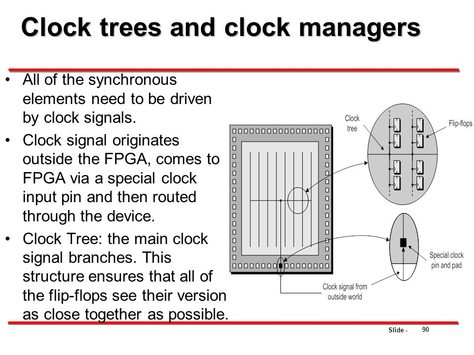 Clock trees and clock managers