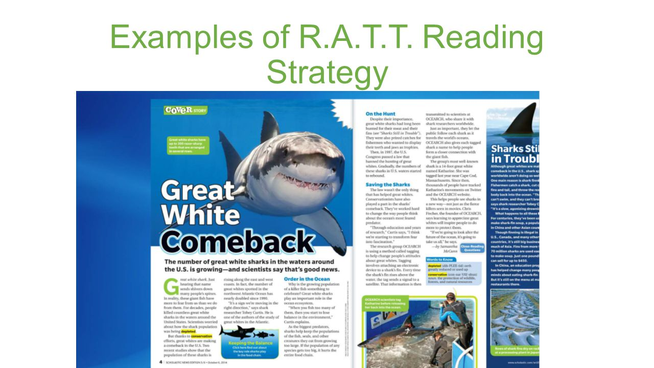 Examples of R.A.T.T. Reading Strategy
