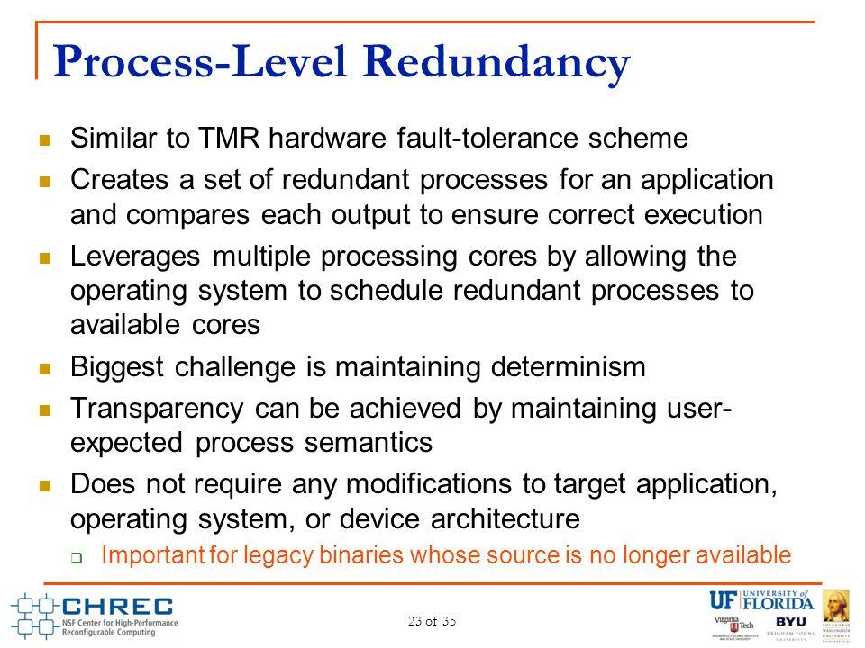 Process-Level Redundancy