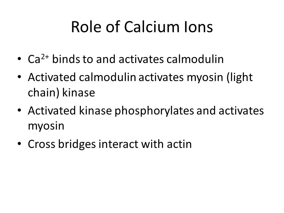 Role of Calcium Ions Ca2+ binds to and activates calmodulin