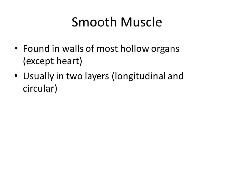 Smooth Muscle Found in walls of most hollow organs (except heart)