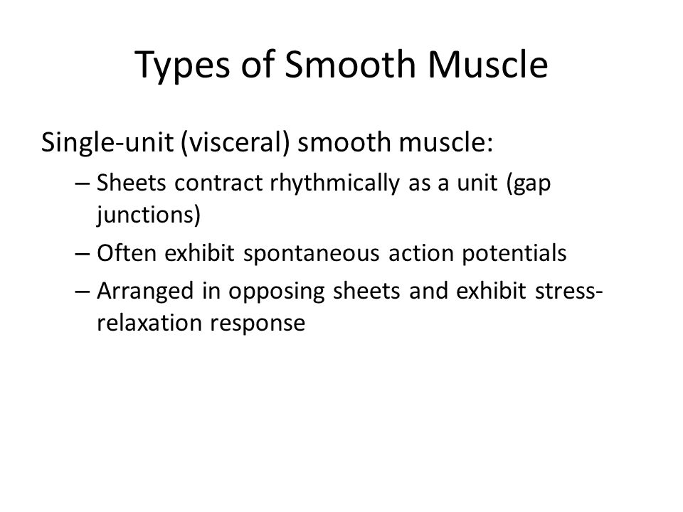 Types of Smooth Muscle Single-unit (visceral) smooth muscle: