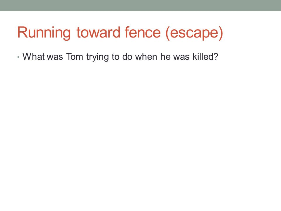 Running toward fence (escape)