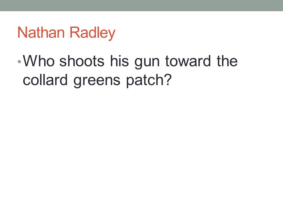 Nathan Radley Who shoots his gun toward the collard greens patch