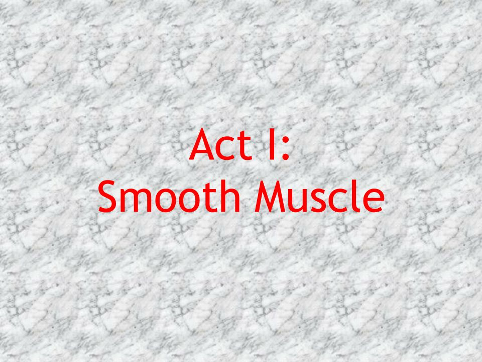 Act I: Smooth Muscle