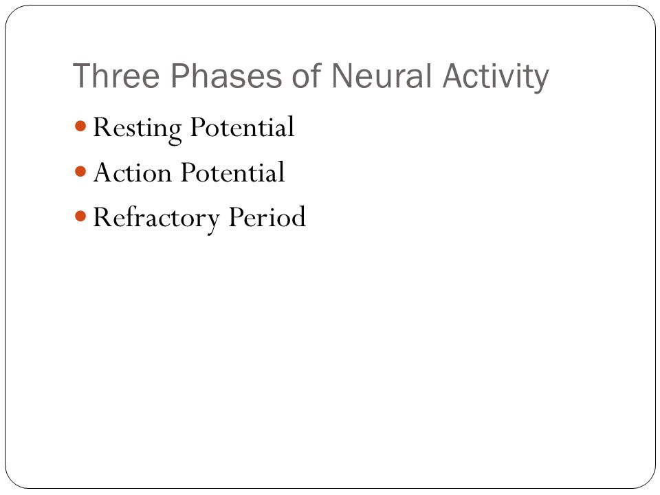 Three Phases of Neural Activity