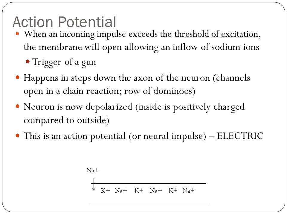 Action Potential Trigger of a gun