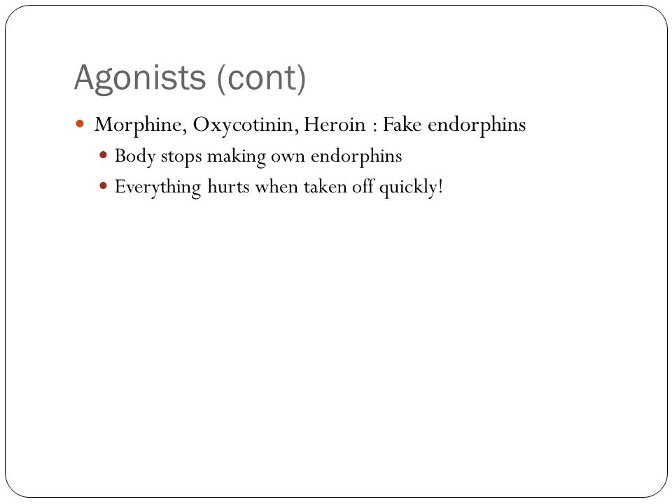 Agonists (cont) Morphine, Oxycotinin, Heroin : Fake endorphins