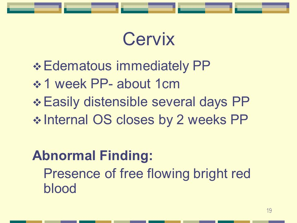 Cervix Edematous immediately PP 1 week PP- about 1cm
