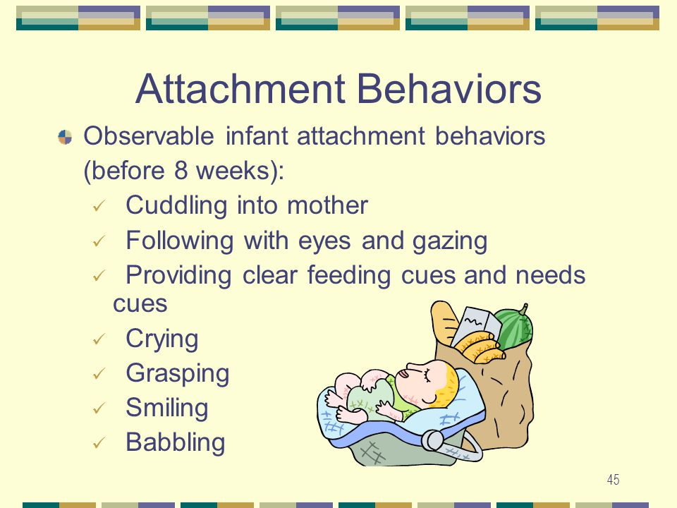 Attachment Behaviors Observable infant attachment behaviors