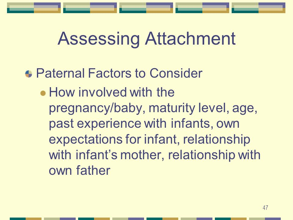 Assessing Attachment Paternal Factors to Consider