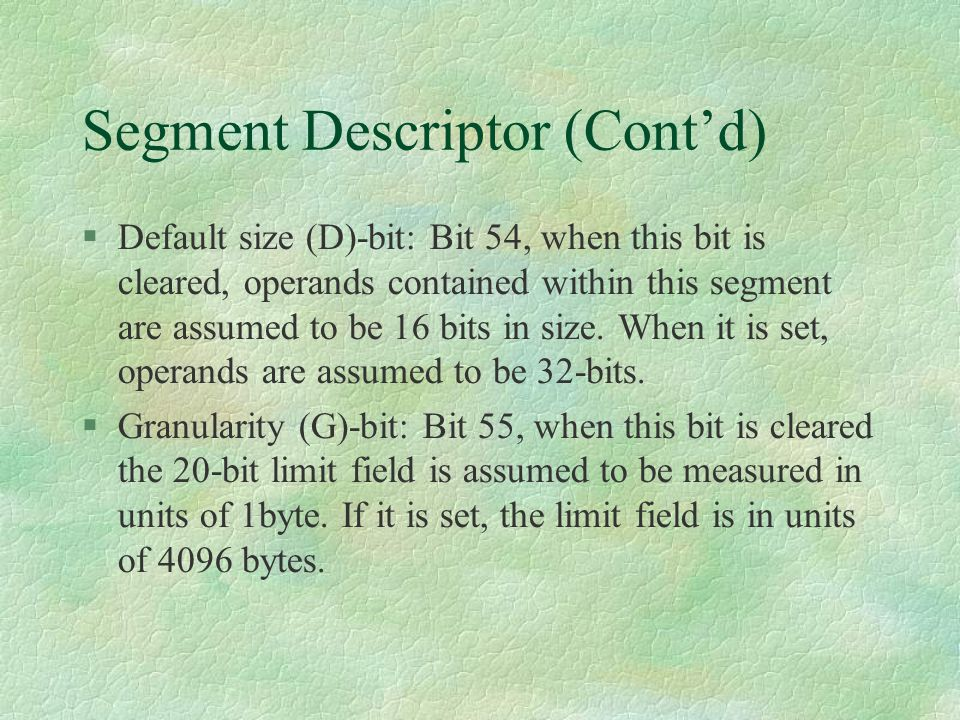 Segment Descriptor (Cont'd)