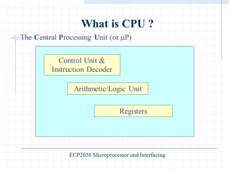 What is CPU The Central Processing Unit (or P)