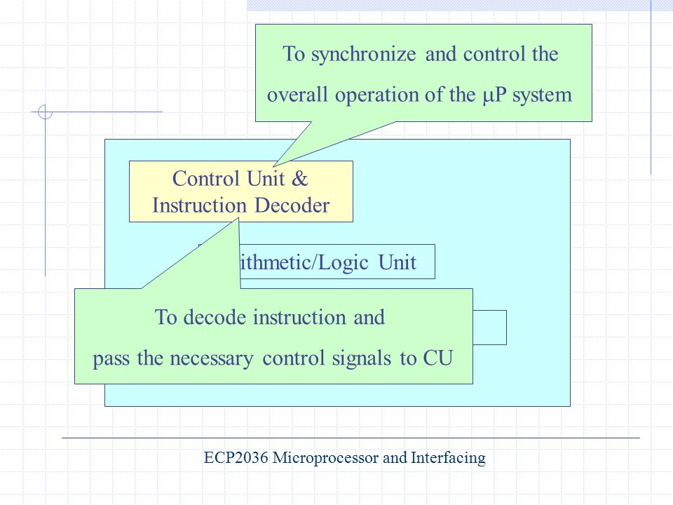 To synchronize and control the overall operation of the P system