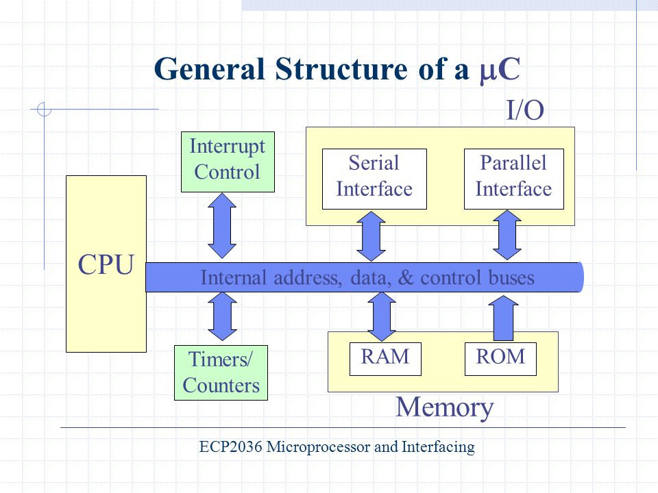 General Structure of a C