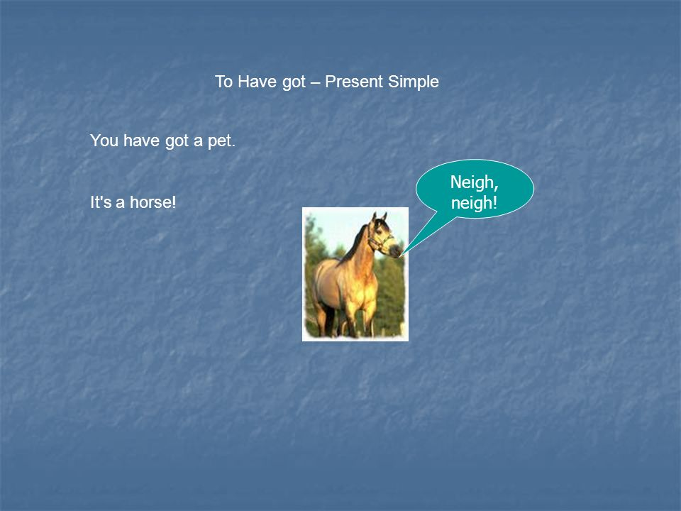 To Have got – Present Simple