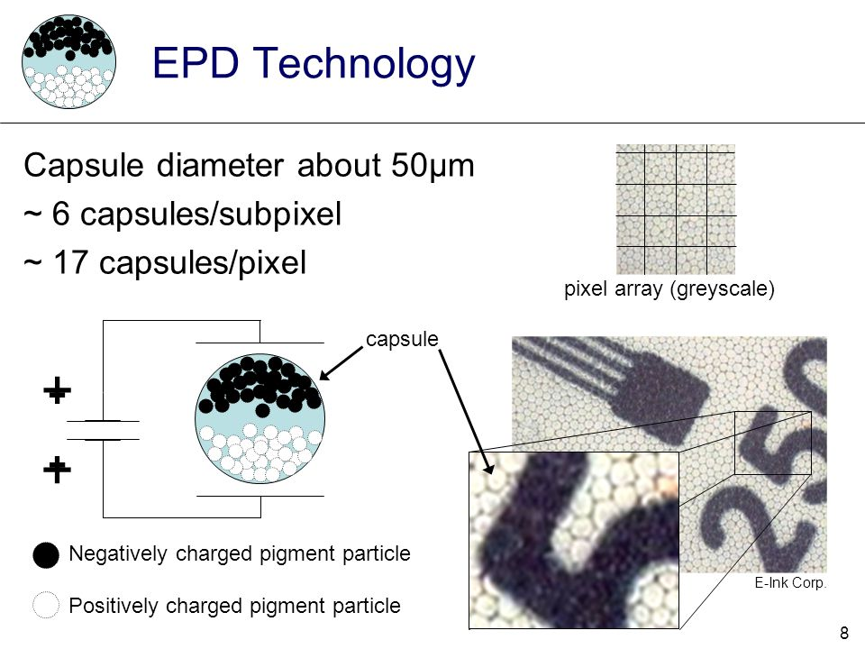 + - - + EPD Technology Capsule diameter about 50μm