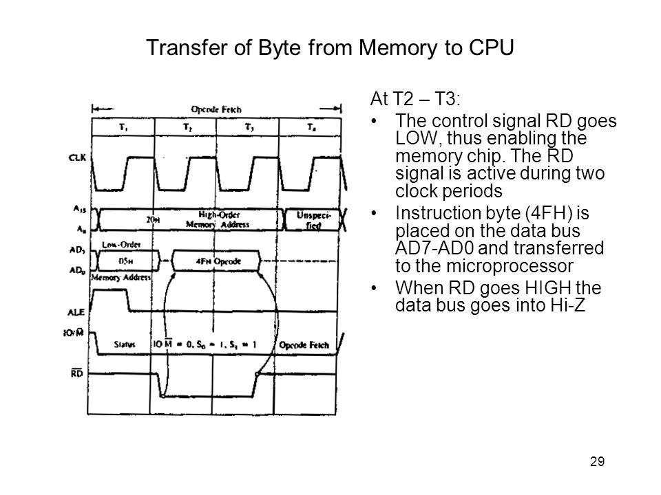 Transfer of Byte from Memory to CPU