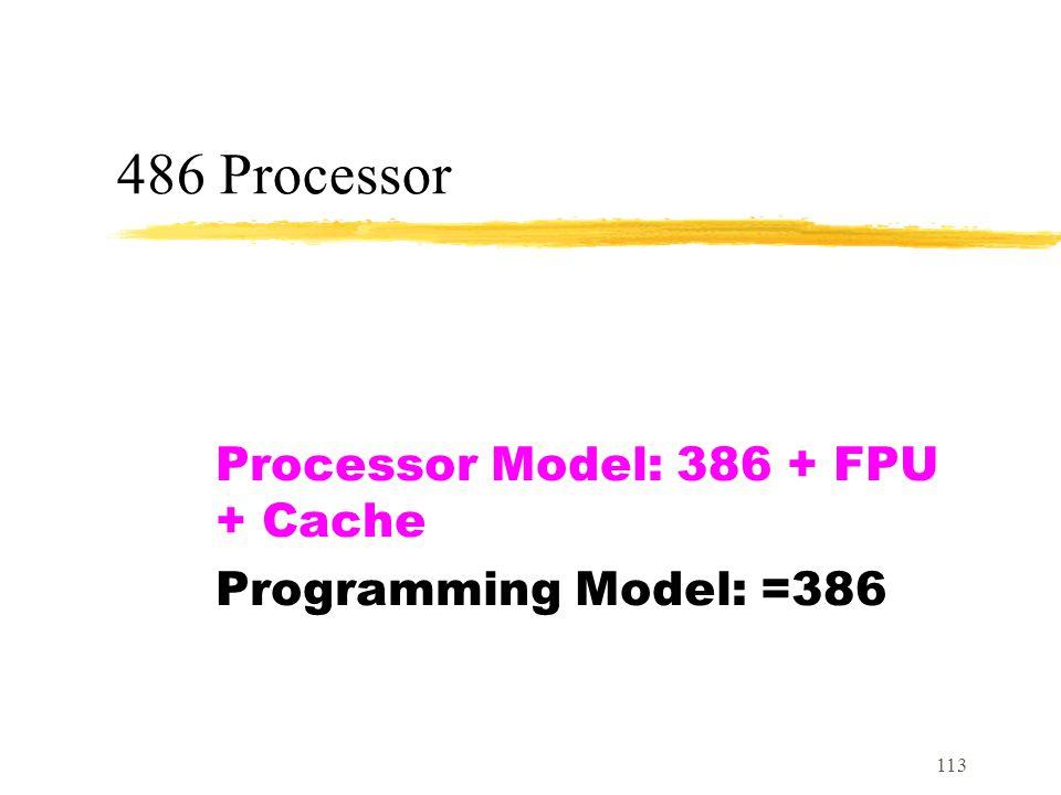 Processor Model: 386 + FPU + Cache Programming Model: =386