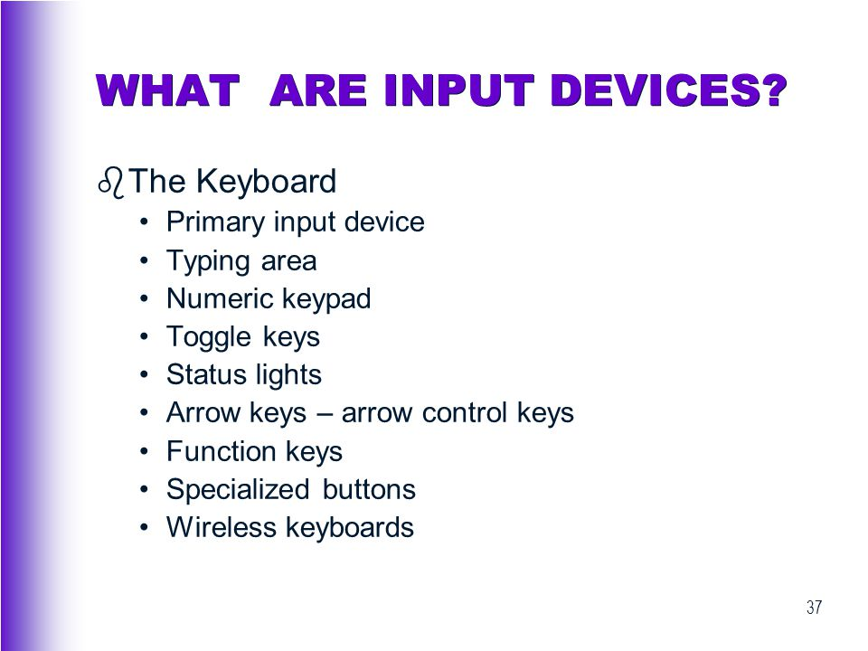 WHAT ARE INPUT DEVICES The Keyboard Primary input device Typing area
