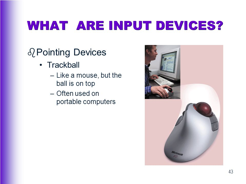 WHAT ARE INPUT DEVICES Pointing Devices Trackball