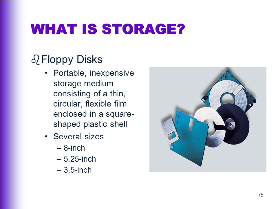 WHAT IS STORAGE Floppy Disks