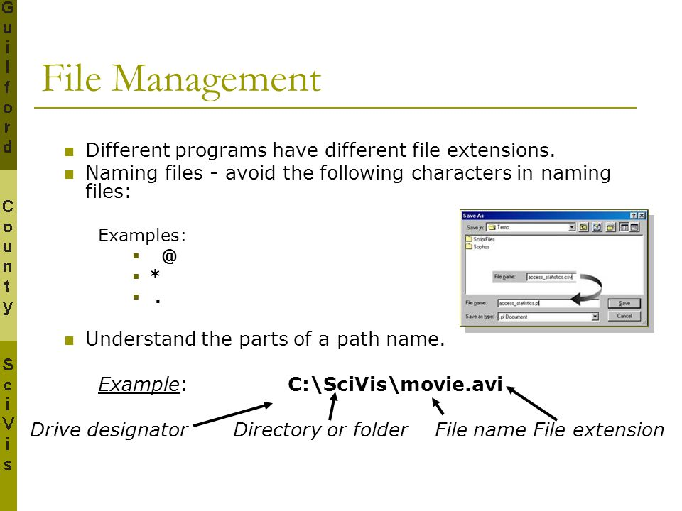File Management Different programs have different file extensions.