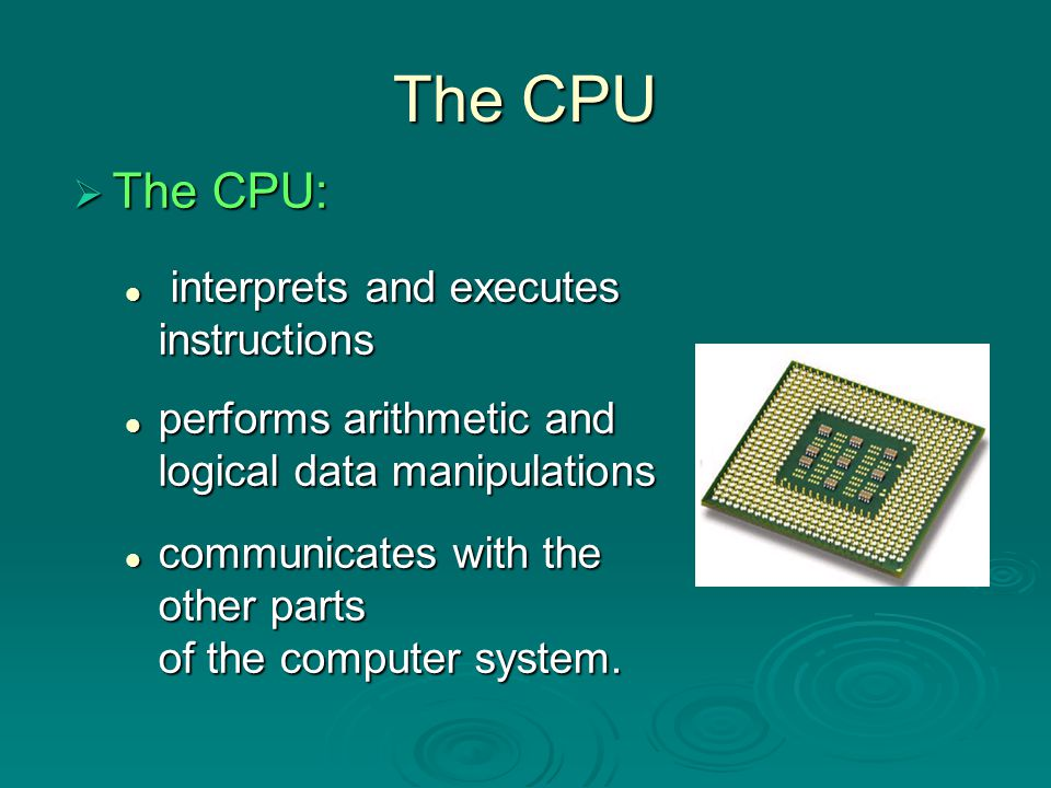 The CPU The CPU: interprets and executes instructions
