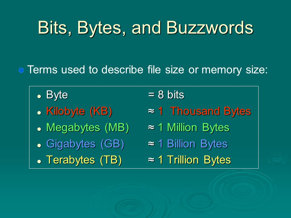Bits, Bytes, and Buzzwords