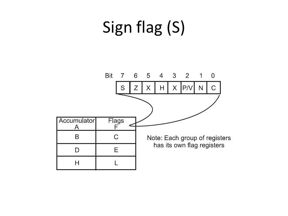 Sign flag (S)