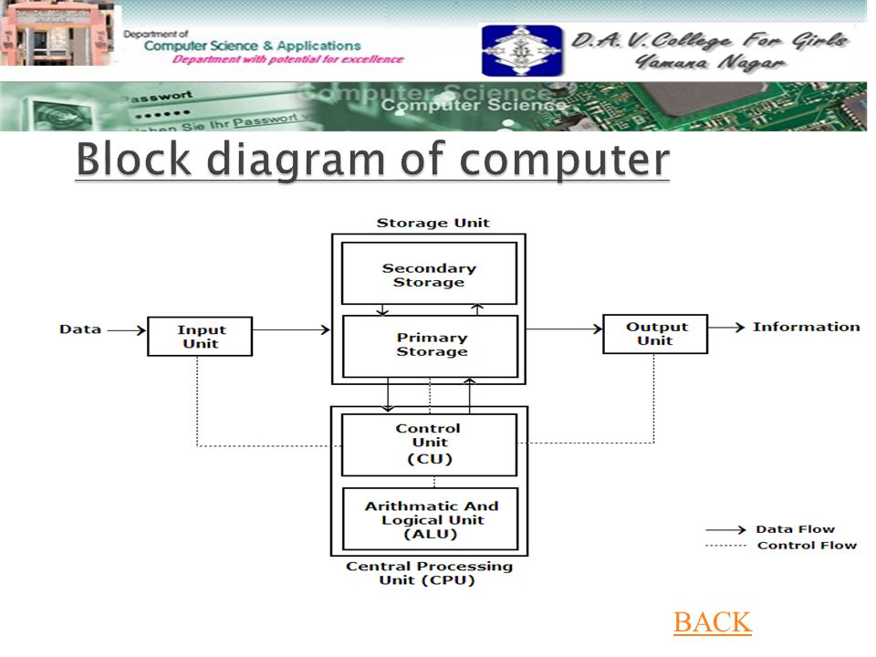 Explain Block Diagram Of ComputerHomework Help For