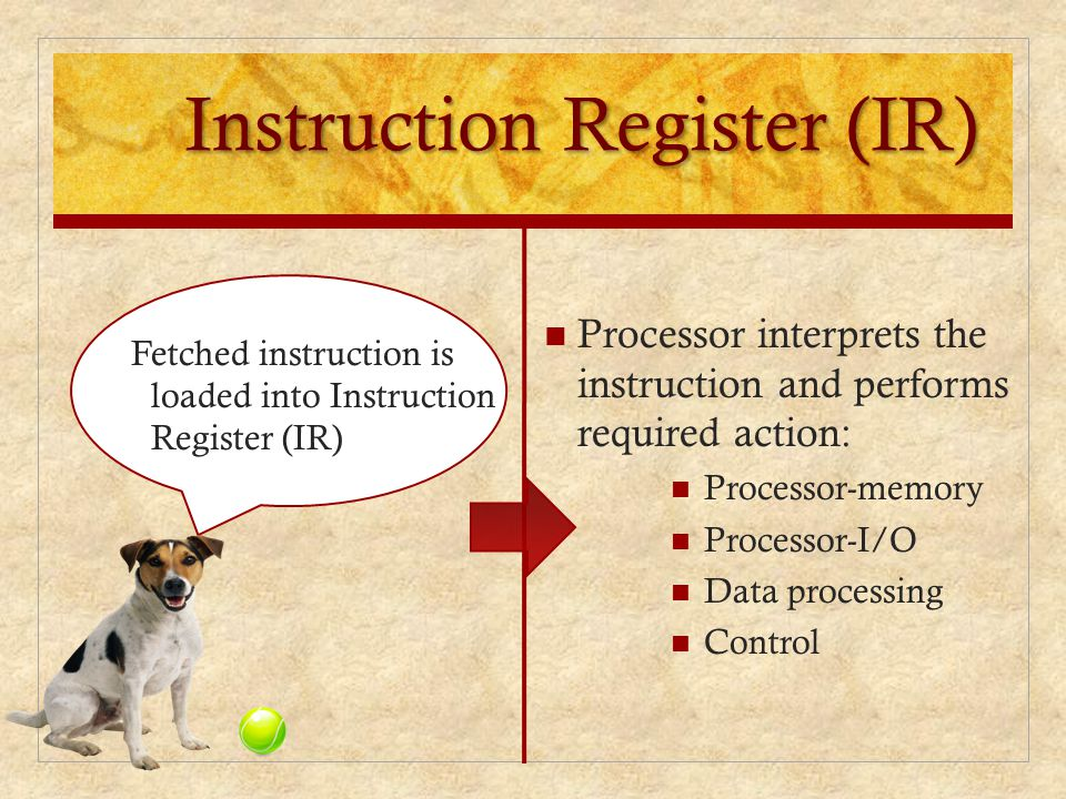 Instruction Register (IR)