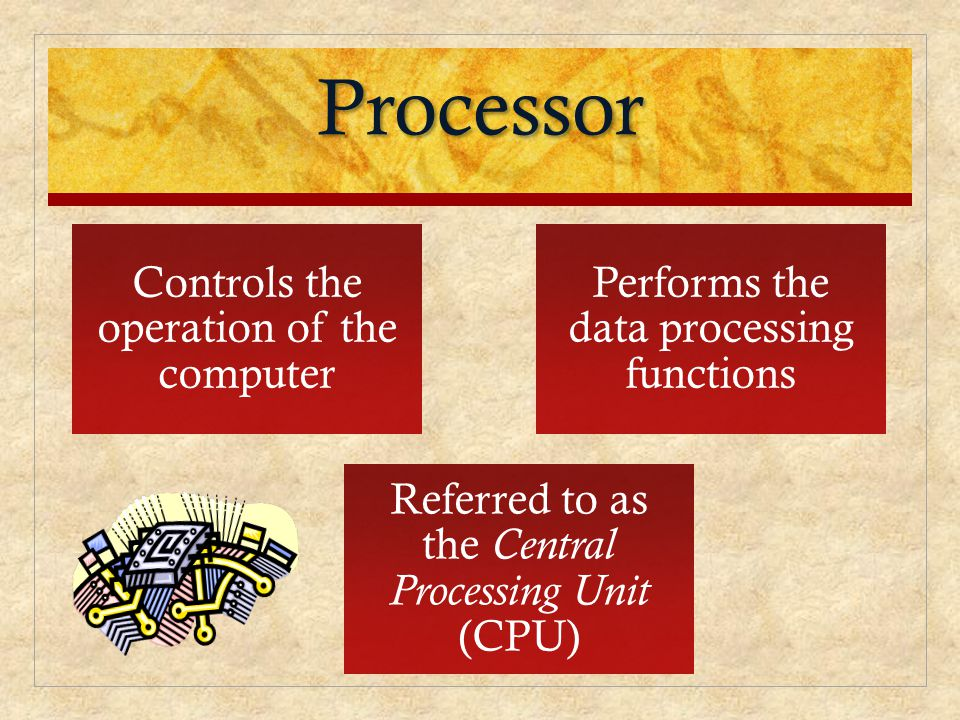 Processor Controls the operation of the computer
